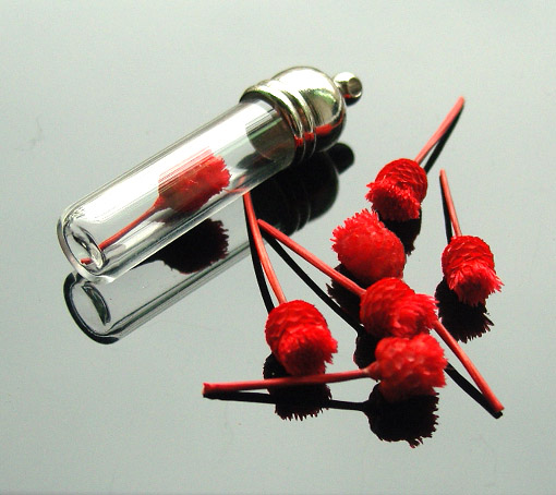 Real Dry Flower(sold in per package of 20pcs,assorted colors)