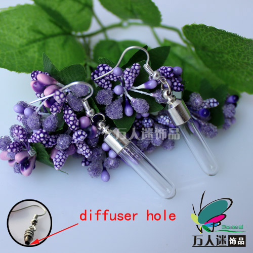 Perfume Earrings(Sold in Per Pairs,6MM Round Bottom Tube,With Diffuser Hole)