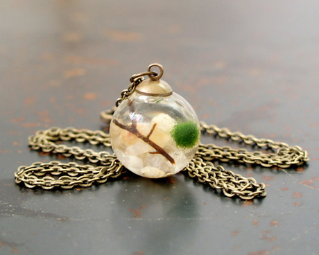 20/25MM Live Marimo Moss Ball Terrarium Necklace
