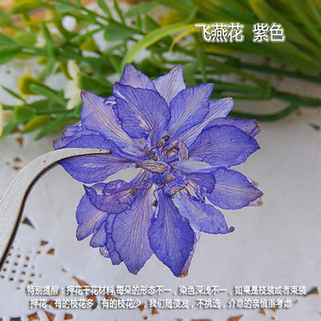 Real dried Pressed Flowers(Sold in per package of 20pcs)
