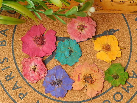 Real dried Rose Pressed flowers(Sold in per package of 20pcs)