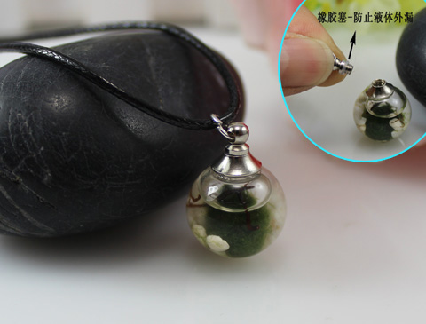 16/18/20/25MM Live Marimo Moss Ball Terrarium Necklace